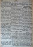 """в-к """"Цариброд"""", 1902, бр. 17, стр. 2"""